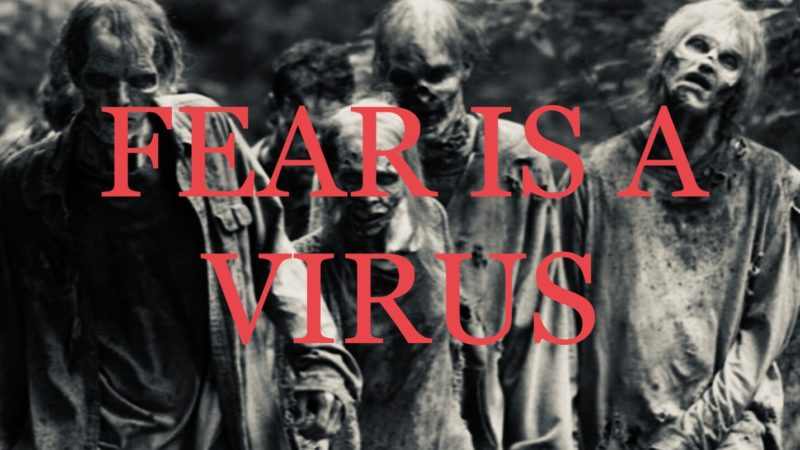 CORONAVIRUS IN AMERICA: FEAR WILL BE WHAT KILLS HERE/CANTO #33